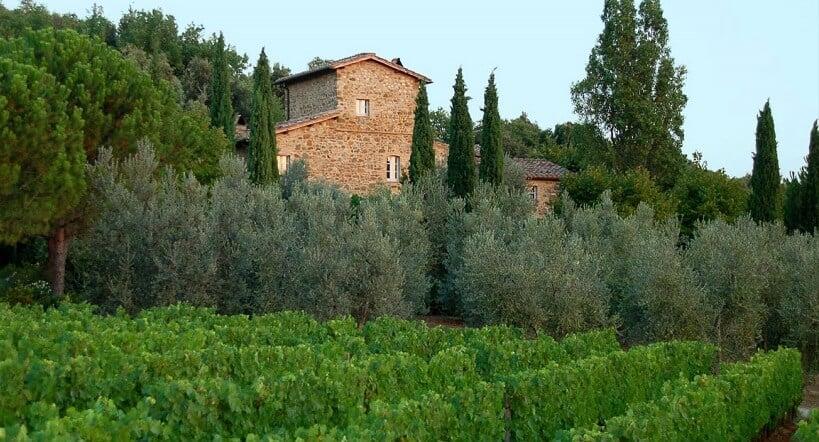 O que fazer na Maté Winery em Montalcino