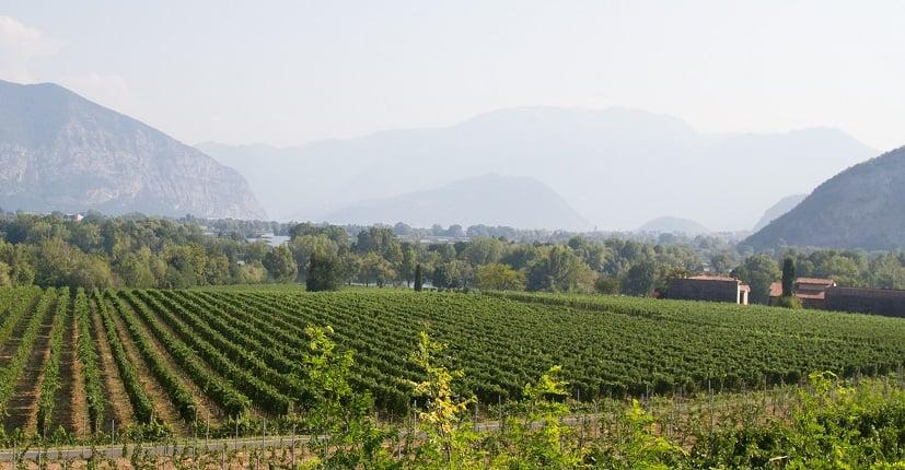 Vinícolas Franciacorta perto de Milão